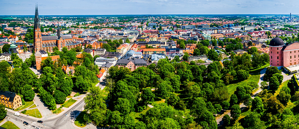 View of Uppsala with the cathedral in the foreground